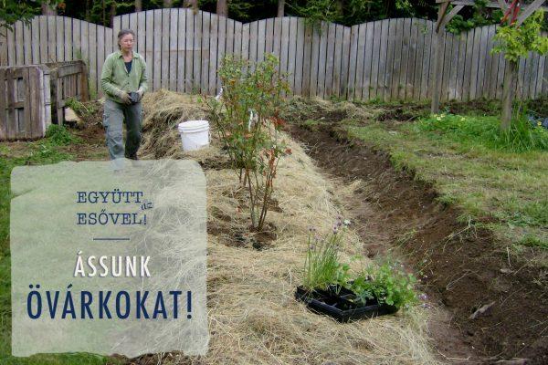 Így működjünk együtt az esővel: ássunk övárkokat!
